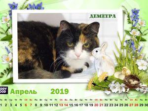 Кошачий календарь Апрель 19г. Ярмарка Мастеров - ручная работа, handmade.