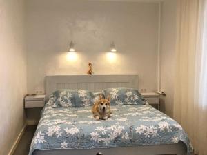 Еще одна наша красотка в своей спальне. Ярмарка Мастеров - ручная работа, handmade.