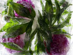 Замороженные во льду. Цветы и лёд. Ярмарка Мастеров - ручная работа, handmade.