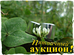 Ледяная мята: парфюмерный аукцион!!!. Ярмарка Мастеров - ручная работа, handmade.