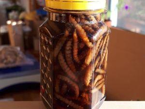 Восковая моль или огневка. Ярмарка Мастеров - ручная работа, handmade.