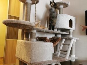 Пятничный позитив: котики наступают!. Ярмарка Мастеров - ручная работа, handmade.