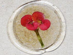Прозрачный термоклей вместо сургуча для оформления подарков сухоцветами. Ярмарка Мастеров - ручная работа, handmade.