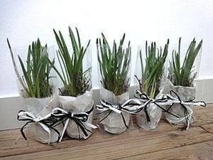Делаем цветочные миниатюры на 8 марта. Ярмарка Мастеров - ручная работа, handmade.