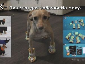 Видео мастер-класс: вяжем теплые босоножки для собачки. Ярмарка Мастеров - ручная работа, handmade.