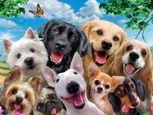 Много собак ???Онлайн курсы  «Собаки в технике тедди». Ярмарка Мастеров - ручная работа, handmade.