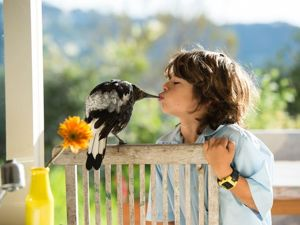 Сорока по имени Пингвин: как умная птица помогла семейству Блум справиться с трудностями. Ярмарка Мастеров - ручная работа, handmade.