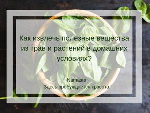 Как извлечь полезные вещества из трав и растений в домашних условиях?. Ярмарка Мастеров - ручная работа, handmade.