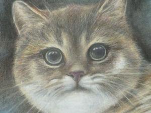 Рисуем котика цветными карандашами. Ярмарка Мастеров - ручная работа, handmade.