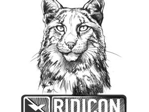 Наш магазин Ridicon. Ярмарка Мастеров - ручная работа, handmade.