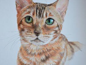 Рисунок бенгальской кошки. Ярмарка Мастеров - ручная работа, handmade.
