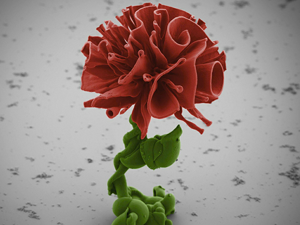 As Small As Possible: a Scientist from Harvard Grows Nanoflowers. Livemaster - hecho a mano - handmade.