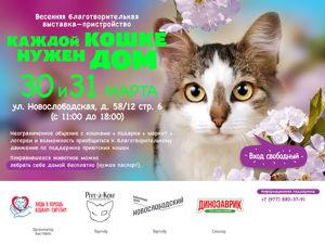Благотворительная выставка  «Каждой кошке нужен дом»   Всего два дня 30 и 31 марта. Ярмарка Мастеров - ручная работа, handmade.