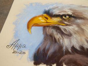 Рисунок сухой пастелью — Белоголовый орлан. Ускоренное видео. Ярмарка Мастеров - ручная работа, handmade.