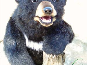 Барибал,черный Американский Медведь. Ярмарка Мастеров - ручная работа, handmade.