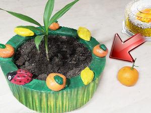 Видео мастер-класс «Вазон из коробки от торта». Ярмарка Мастеров - ручная работа, handmade.