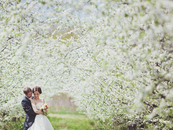 Подготовка к весенней свадьбе. | Ярмарка Мастеров - ручная работа, handmade