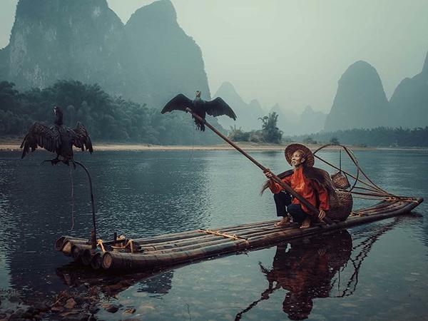 19 самых популярных фотографий среди участников Sony World Photography Awards   Ярмарка Мастеров - ручная работа, handmade