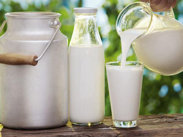 Козье молоко: полезно не только внутри, но и снаружи   Ярмарка Мастеров - ручная работа, handmade
