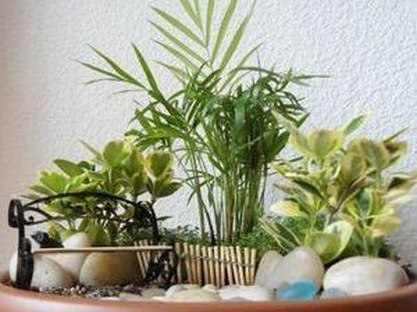 Мини-сад в горшке | Ярмарка Мастеров - ручная работа, handmade