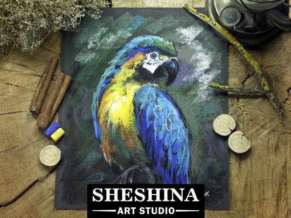 Рисуем попугая сухой пастелью | Ярмарка Мастеров - ручная работа, handmade