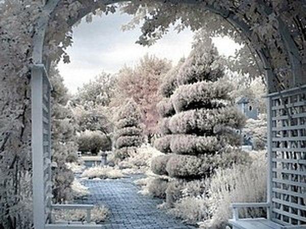 Зимняя радуга! | Ярмарка Мастеров - ручная работа, handmade