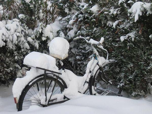 Предновогодний календарь блога! 21 декабря! Конкурс зимних фотографий!!! | Ярмарка Мастеров - ручная работа, handmade