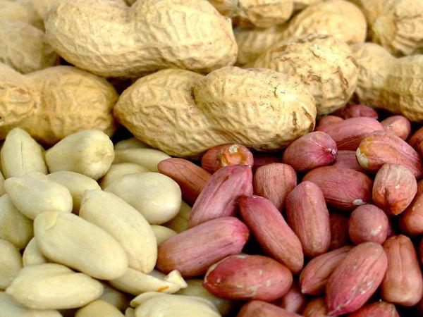 Жареный арахис, табак, кожа, дерево. Прекрасная осень. | Ярмарка Мастеров - ручная работа, handmade