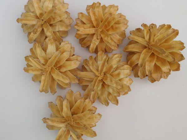 Как отбелить сосновые шишки   Ярмарка Мастеров - ручная работа, handmade