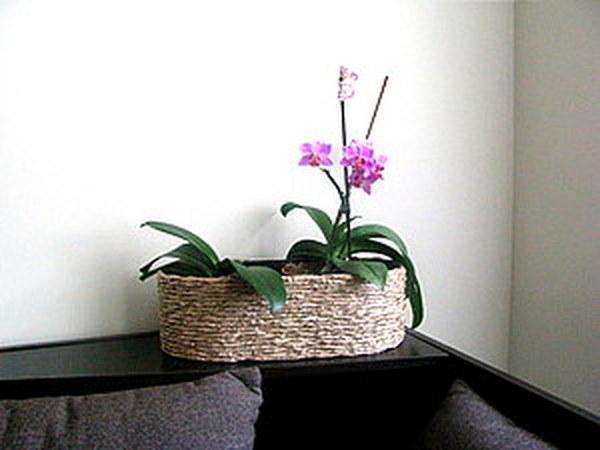Декорирование цветочных горшков | Ярмарка Мастеров - ручная работа, handmade