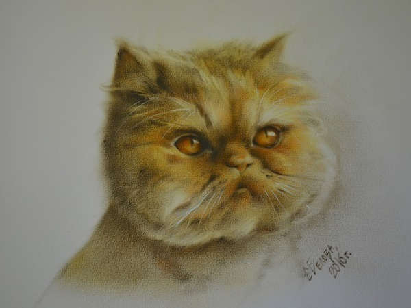 Рисуем кота в технике сухая кисть   Ярмарка Мастеров - ручная работа, handmade