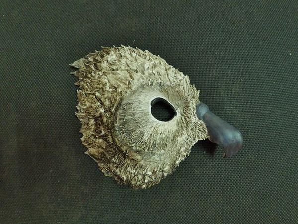 МК по папье-маше «Венецианская маска» | Ярмарка Мастеров - ручная работа, handmade
