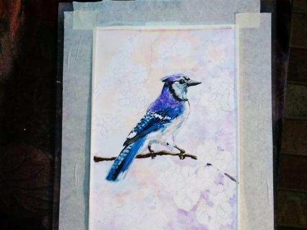 Рисую голубую сойку   Ярмарка Мастеров - ручная работа, handmade