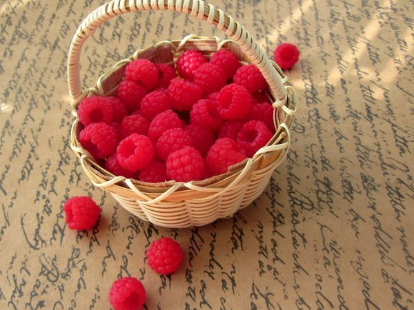 Simple and Easy: Raspberries from Polymer Clay | Livemaster - handmade