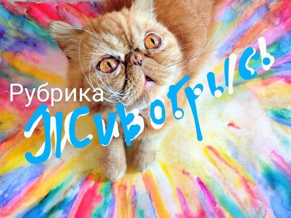Рисуем акварелью радужную кошку | Ярмарка Мастеров - ручная работа, handmade
