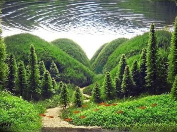Аквариумные пейзажи | Ярмарка Мастеров - ручная работа, handmade