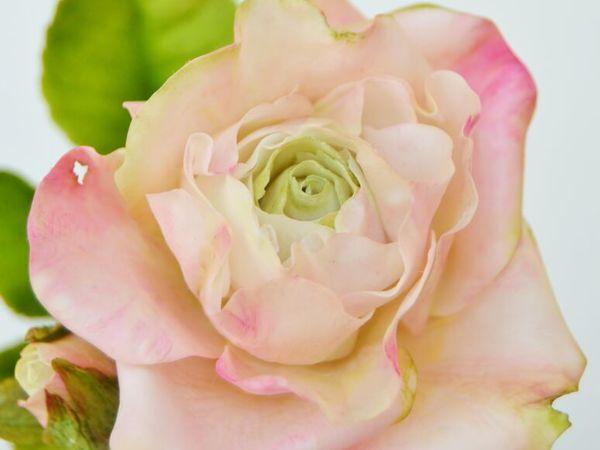 Розовые Розы. Букет . Видео | Ярмарка Мастеров - ручная работа, handmade