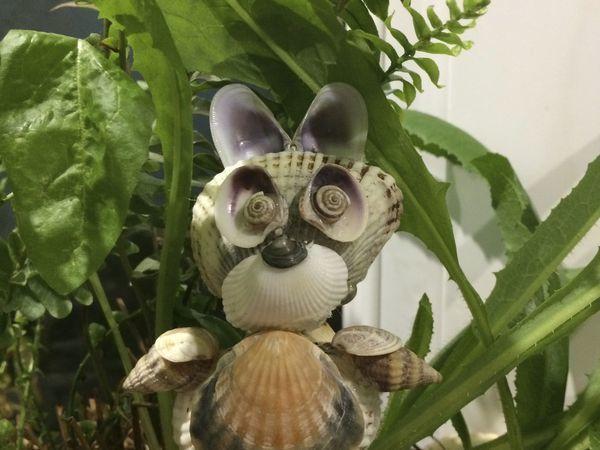 Мастерим зайчика Нюшу из морских ракушек | Ярмарка Мастеров - ручная работа, handmade