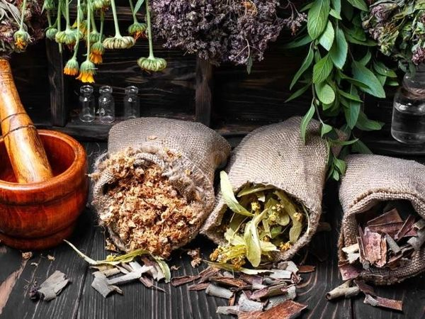Целебные травы (стишок-запоминалка) | Ярмарка Мастеров - ручная работа, handmade