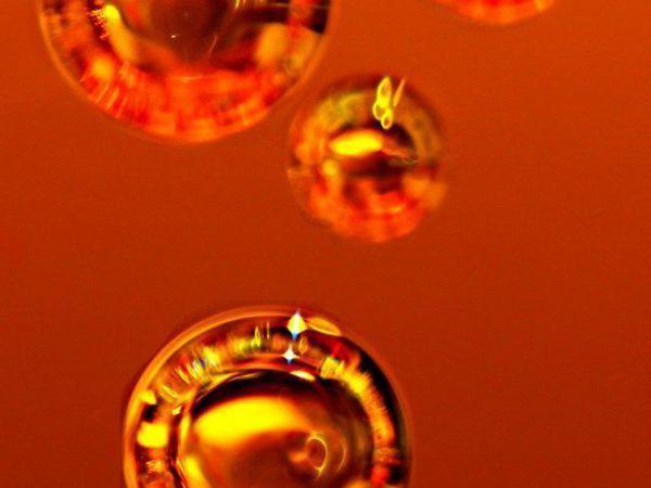 Сегодня в блоге - подробно о вытяжке прополиса на облепиховом масле . Анонс | Ярмарка Мастеров - ручная работа, handmade