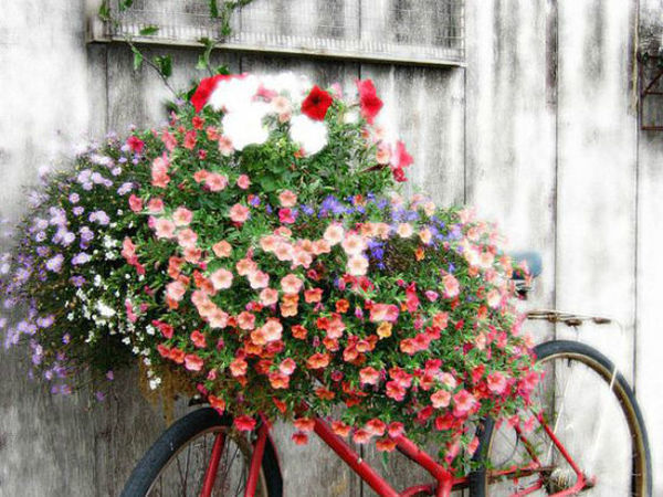 Creating Flower Beds in a Yard: 16 Original Ideas | Livemaster - handmade