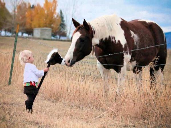 Солнце в детских улыбках: добрые и вдохновляющие фотографии Елены Карнеевой   Ярмарка Мастеров - ручная работа, handmade