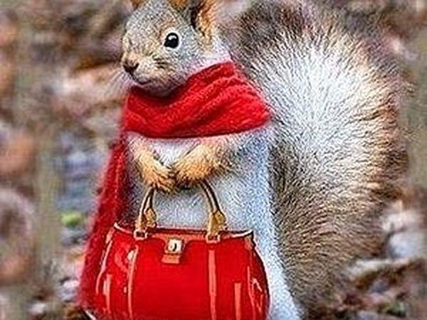 Осень — не повод грустить... Осень — это повод носить красивый шарфик! | Ярмарка Мастеров - ручная работа, handmade
