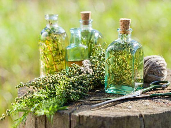Уксус на травах — основа здоровья | Ярмарка Мастеров - ручная работа, handmade