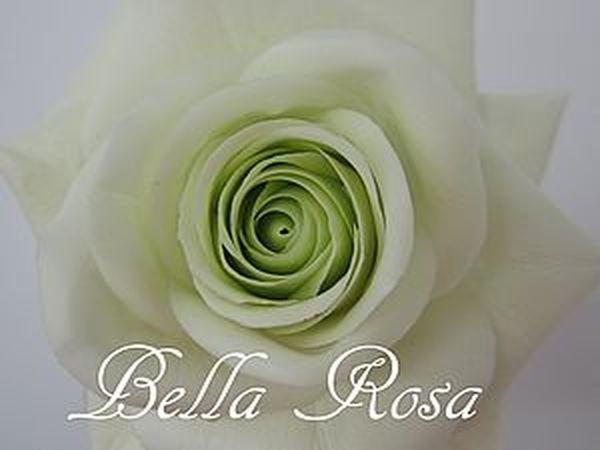 МК по лепке розы   Ярмарка Мастеров - ручная работа, handmade