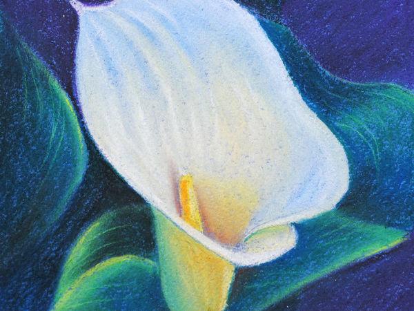 Рисуем пастелью изящный цветок каллы | Ярмарка Мастеров - ручная работа, handmade