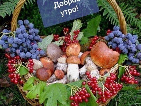 Доброй и красивой вам Осени , друзья ! | Ярмарка Мастеров - ручная работа, handmade