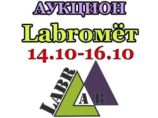 Видео-анонс аукциона 14.10-16.10.16г. | Ярмарка Мастеров - ручная работа, handmade