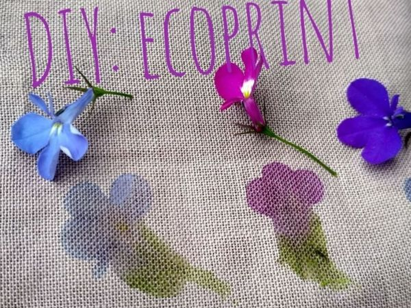 Creating Ecoprint from Flowers and Leaves | Livemaster - handmade