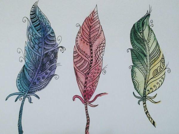 Рисуем пёрышки, совмещая акварель и зентангл | Ярмарка Мастеров - ручная работа, handmade